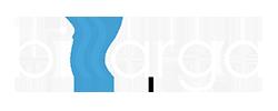 Billarga Website Design and SEO